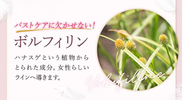 ハナスゲという植物からとられた成分。女性らしいラインへ導きます